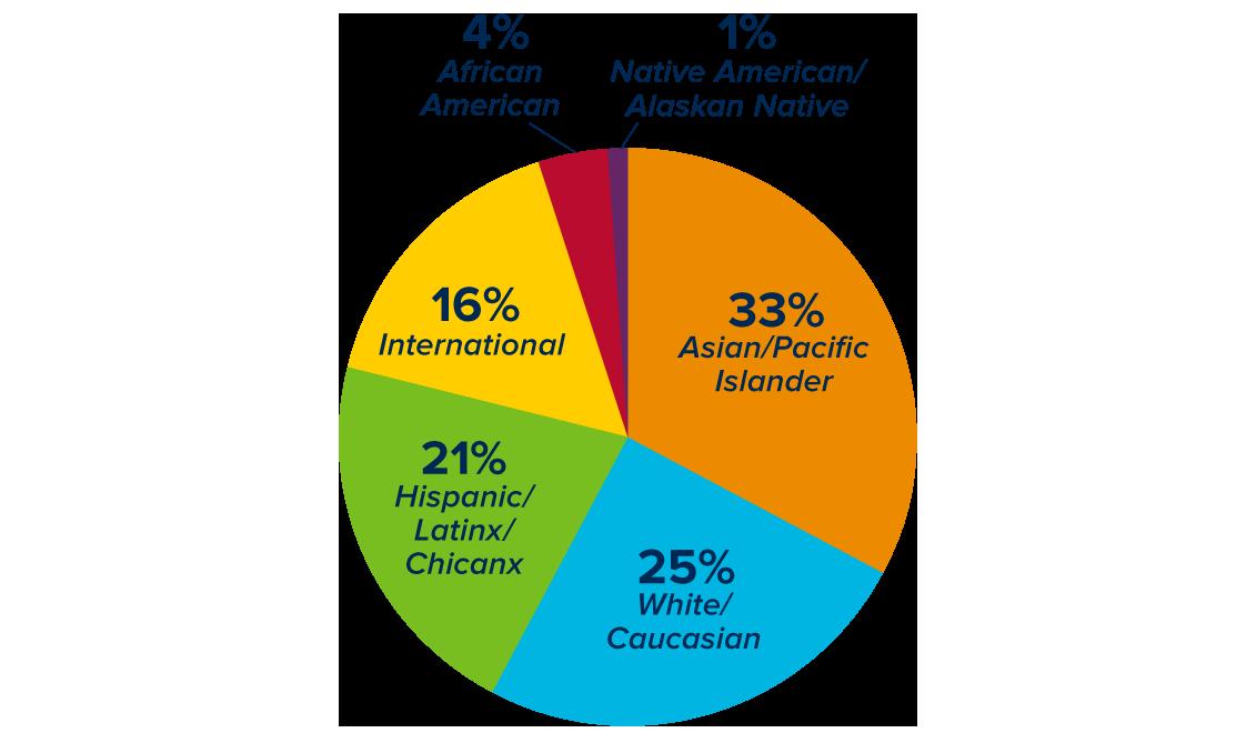 Race and Ethnicity Degree-Seeking Undergraduates