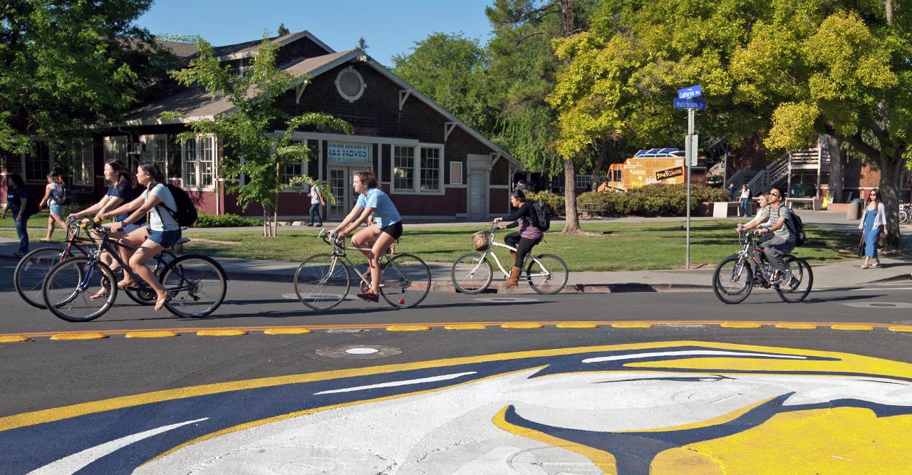 students riding bikes around the bike circle - freshman applicant timeline