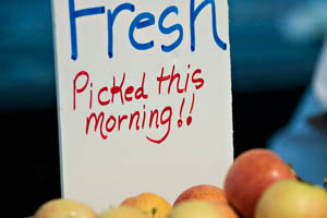 """a box of peaches with a handwritten sign that reads """"Fresh, picked this morning"""""""