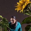 Nicky Creux with sunflowers.
