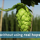 Without using real hops