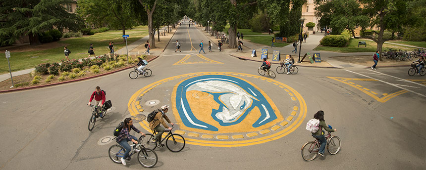 View of a UC Davis traffic circle with bicyclists and trees