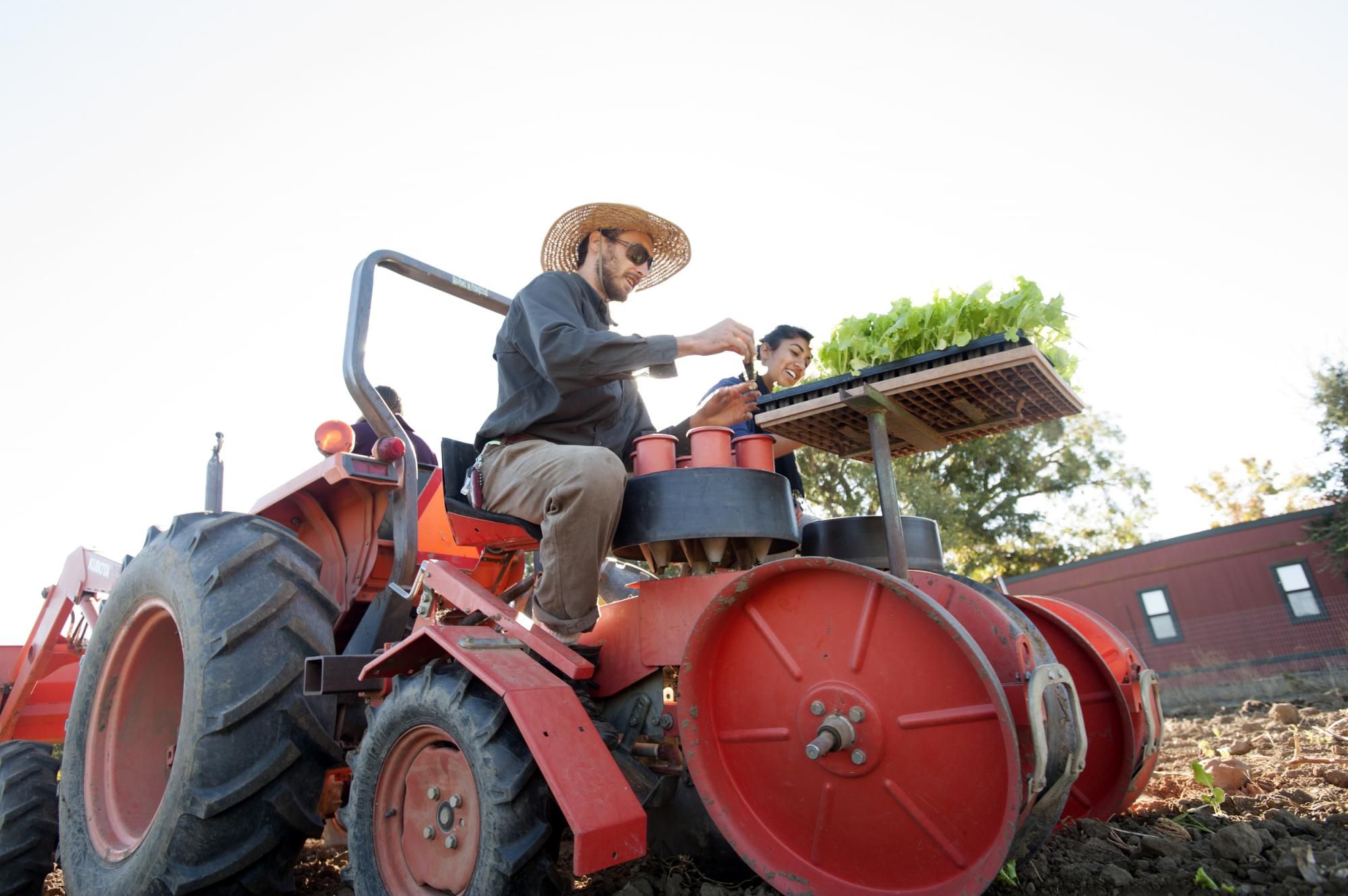 Man driving a tractor carrying vegetation