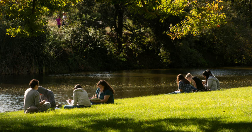 Small groups of students studying on grass by the water
