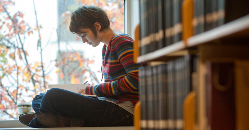 Student reading on sunny windowsill