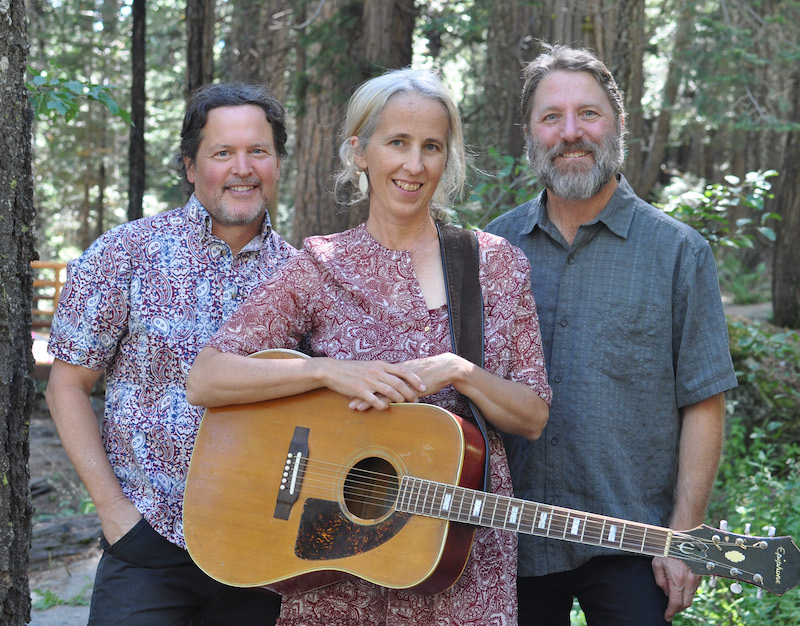 The Rita Hosking Trio standing in the woods.