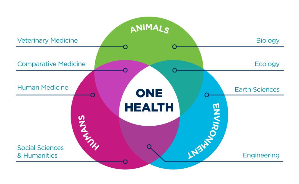A Venn Diagram of the One Health Approach at UC Davis